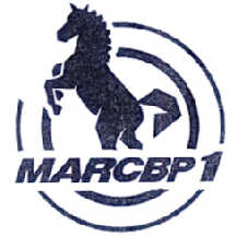 MARCBP 1 商标公告